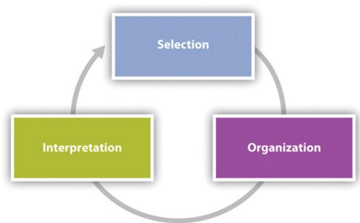 the concept of administration and organization